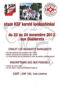 affiche stage KSF 2013