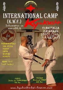 locandina summer camp italia 2013